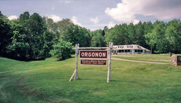 Orgonon-2